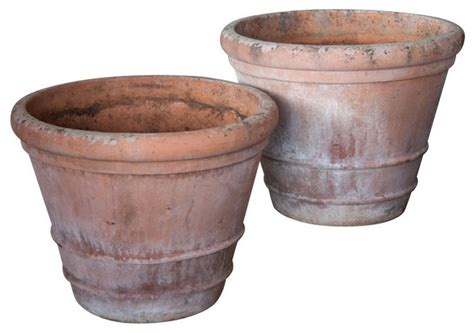 pair of large english lemon tree pots outdoor pots and