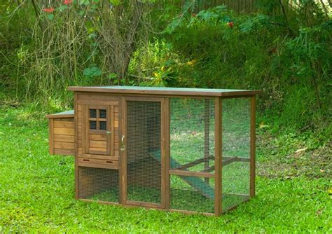 Top 28 Backyard Chicken Coops Good Dinner Mom How We Best Chicken Coop Design Backyard Chickens