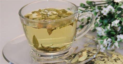 Teh Hijau Pelangsing Tubuh daun jati cina teh pelangsing tubuh senna leaf teh
