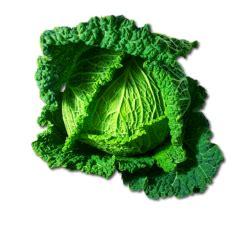 calcolo valori nutrizionali alimenti verza calcolo valori nutrizionali alimenti calcola pasto