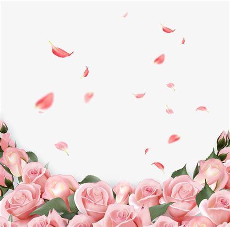 roseleafbackground decorationpink flowerspetalbotany