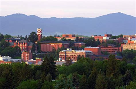 Mba At Wsu by 2 600 Suspected Cases Of Swine Flu H1n1 Reported At