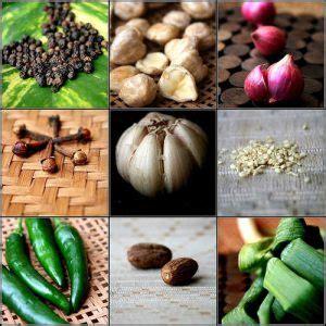 Bibit Tanaman Herbal Brotowali penjual tanaman dan bibit tanaman obat indonesia