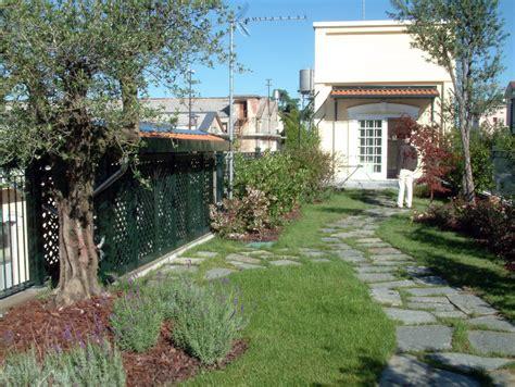 piante per giardini pensili giardini pensili perliroof 174 intensivo perlite italiana
