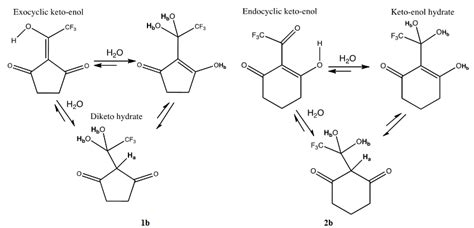 hydration keto synthesis and reactivity of fluorinated cyclic ketones