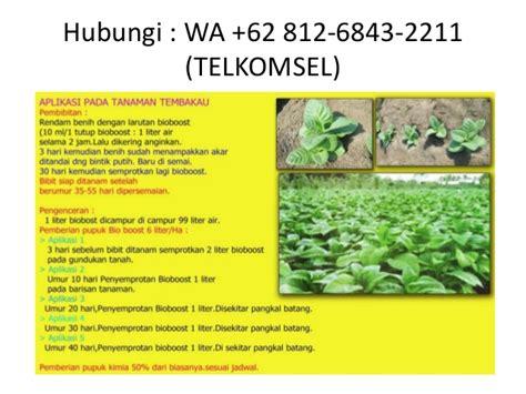 Pupuk Organik Bioboost pupuk organik bioboost wa 62 812 6843 2211