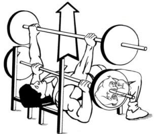 back bench press triple threat bench press back squat deadlift evolutionary org