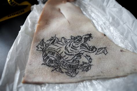 tattoo test quiz direwolf tattoo practice my job in creativity