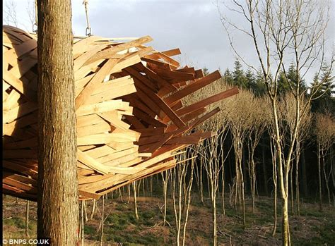 design students build impressive cocoon like tree house