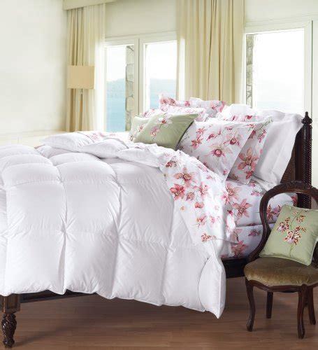 level 4 comforter cuddledown 800 fill power batiste down comforter king