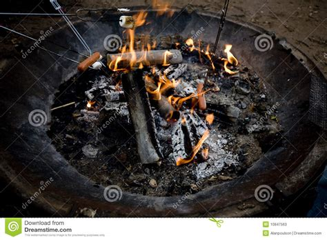 marshmello dog video hot dogs and marshmellow roast stock photos image 10847563