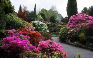 Flower In Garden Pictures Flower Garden Wallpapers Wallpaper Cave