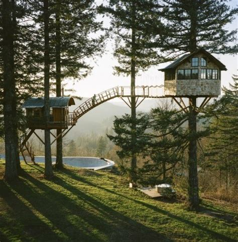 cool tree houses quits his to build a cool tree house and live like