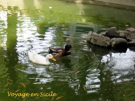 hotel il giardino inglese palermo le jardin anglais de palerme il giardino inglese voyage