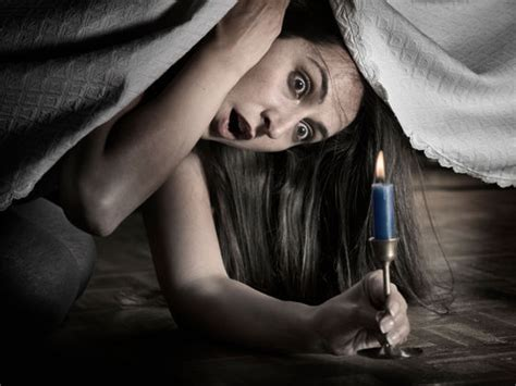 new cat hiding under bed hiding under the bed www pixshark com images galleries with a bite