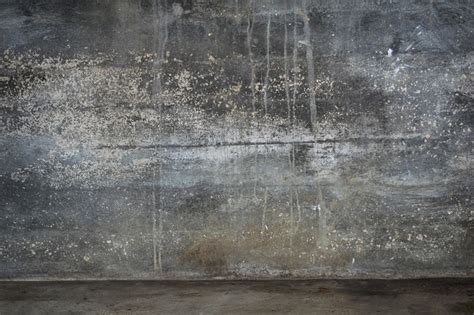how to find and prevent mold basements crawl spaces