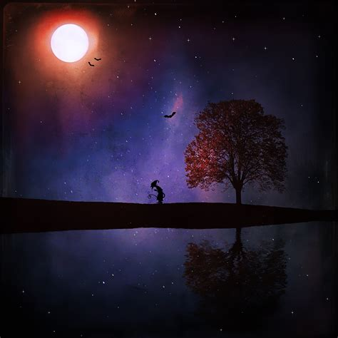images landscape tree sky night star lake