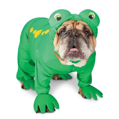 frogs and dogs frog costume for dogs frog costume