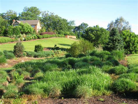 Search South Carolina South Carolina Botanical Garden