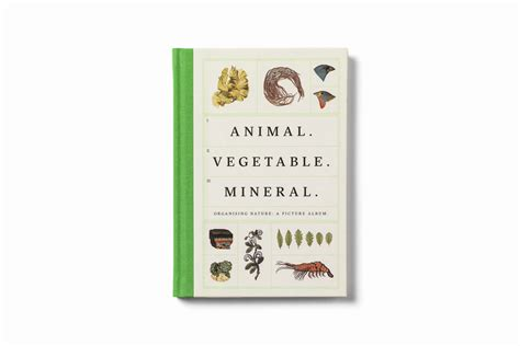 libro animal vegetable mineral organising animal vegetable mineral un libro illustrato sulla storia della classificazione della natura