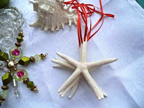 beach christmas ornament white starfish by manateecovecrafts
