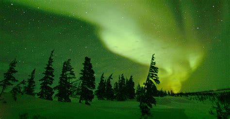 northern lights packages alaska northern lights tour videos natural habitat adventures