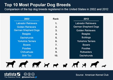 which state has the most dog owners per capita according to 2016 stats chart top 10 most popular dog breeds statista