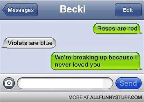 Pics For Gt Funniest Text - roses are red violets are blue break up poems www