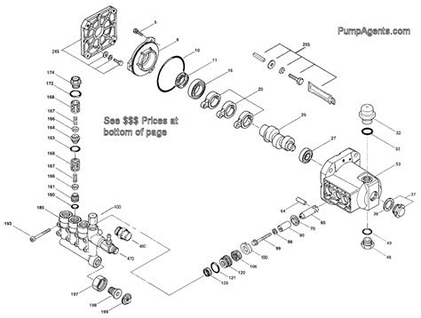 cat pumps parts diagrams charming cat pumps parts diagrams contemporary best