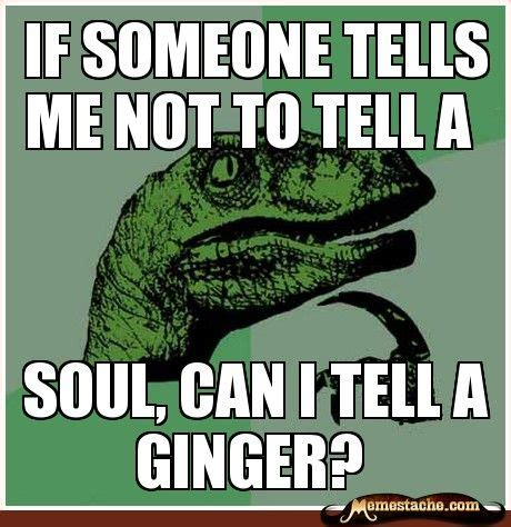 Ginger Snap Meme - for my ginger husband teasing about his hair color never