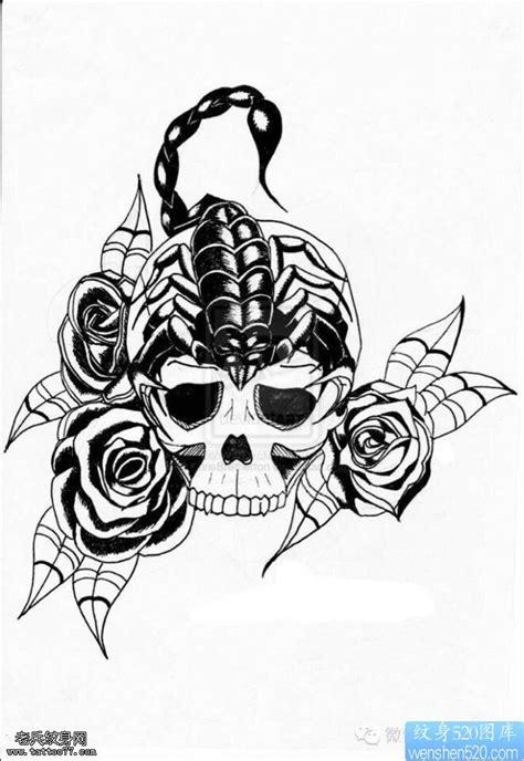 蝎子玫瑰花骷髅纹身手稿图片