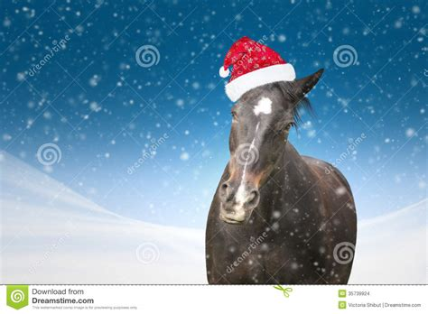 funny horse with christmas hat on blue background snowfall