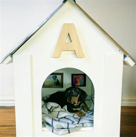 who put the dog in the dog house man builds doghouse for sister in law s new puppy