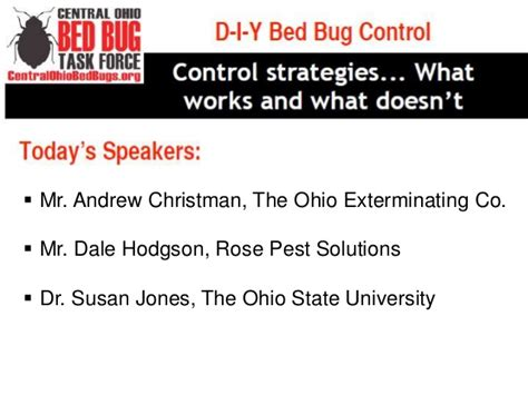 bed bug treatment options diy bed bug treatment options