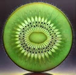 number pattern found in nature fractal symmetry in nature kiwi don t know if it is