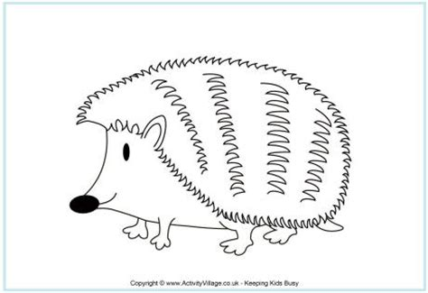 hedgehog colouring page