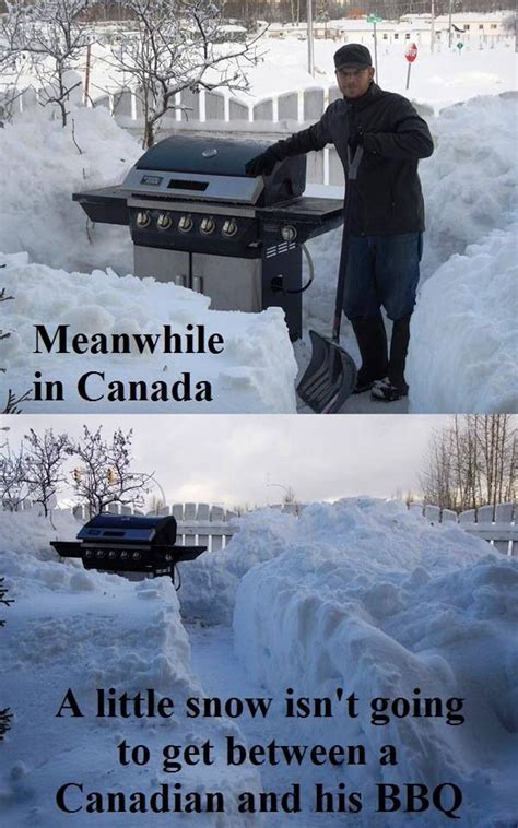 Canada Snow Meme - best 25 meanwhile in canada ideas on pinterest canada
