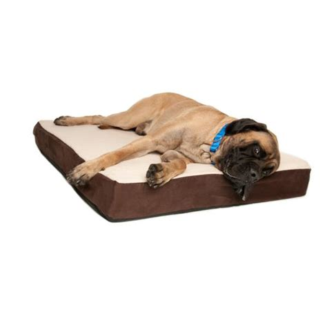 orthopedic dog bed large big barker orthopedic dog beds for large extra large