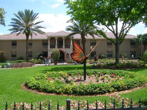 Decorating A Florida Home The Lovely Side Survey Schools