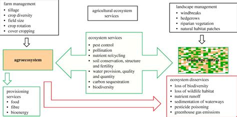 Plant Manager Resume Examples by Ecosystem Services And Agriculture Tradeoffs And