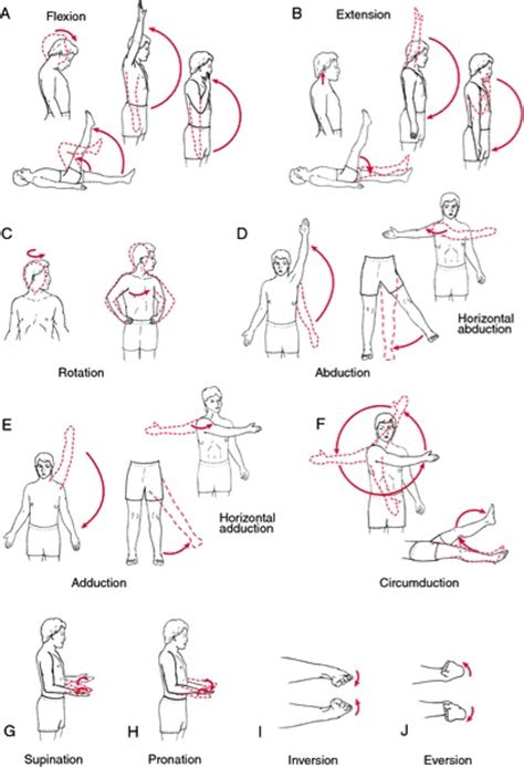 Galerry functional range of motion chart