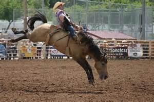 Well deal with it are rodeos cruel