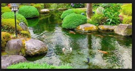 Contoh Dan Lu Taman contoh gambar kolam ikan minimalis kolam ikan koi kolam