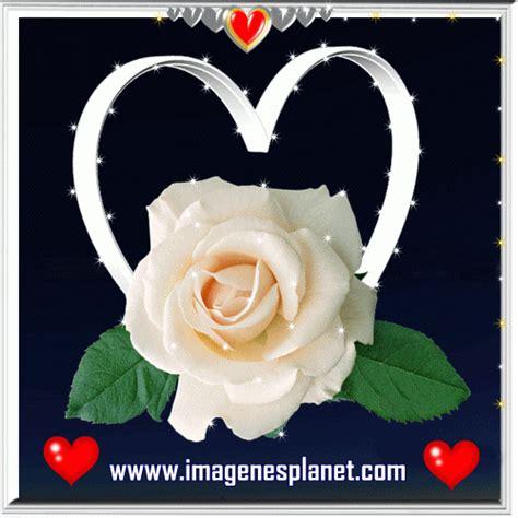 imagenes de rosas verdes con frases imagenes gifs romanticas de amor con frases bonitas