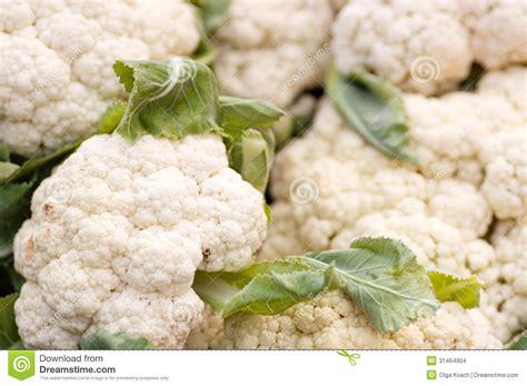 Cauliflower Fresh fresh cauliflower stock images image 31464904