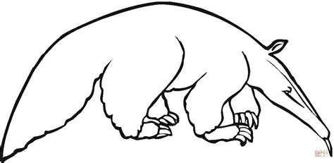 Pangolin Coloring Page Coloring Pages Anteater Coloring Page