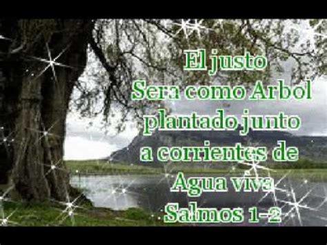 imagenes reflexivas de la biblia pasajes de la biblia youtube