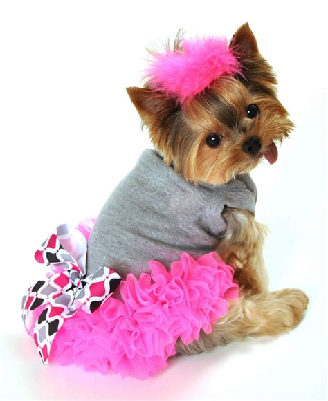puppy dresses neon pink chiffon ruffles and a pretty black gray white and pink print bow
