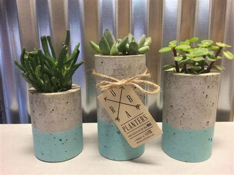 succulent planters for sale concrete succulent planters urba planters set of 3 by