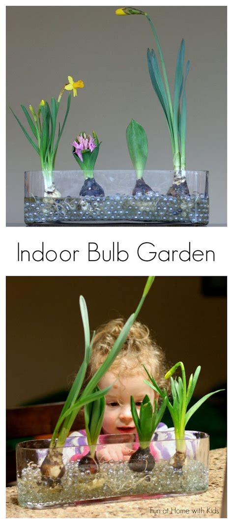 indoor gardening activities 78 images about activities and ideas for on